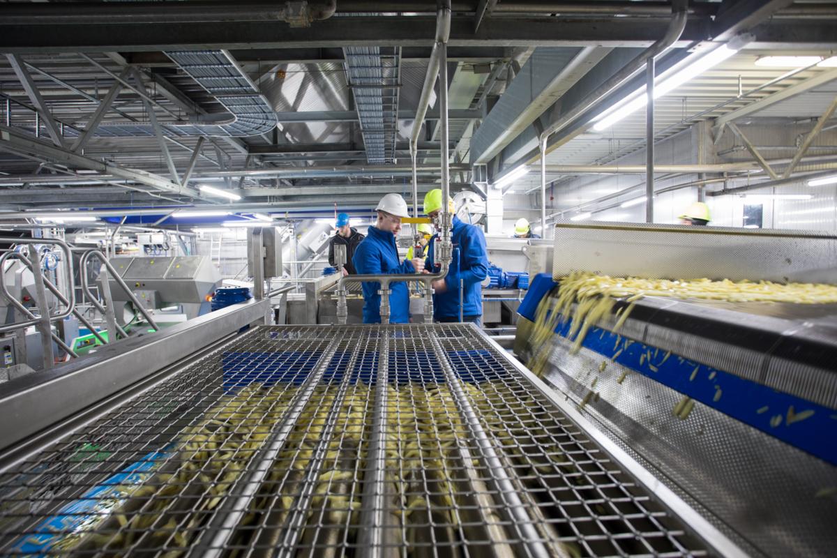 Potatoes factory